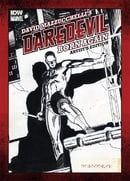 David Mazzucchelli Daredevil Born Again Artist Edition HC